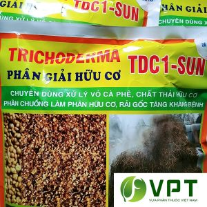 trichoderma nam doi khang