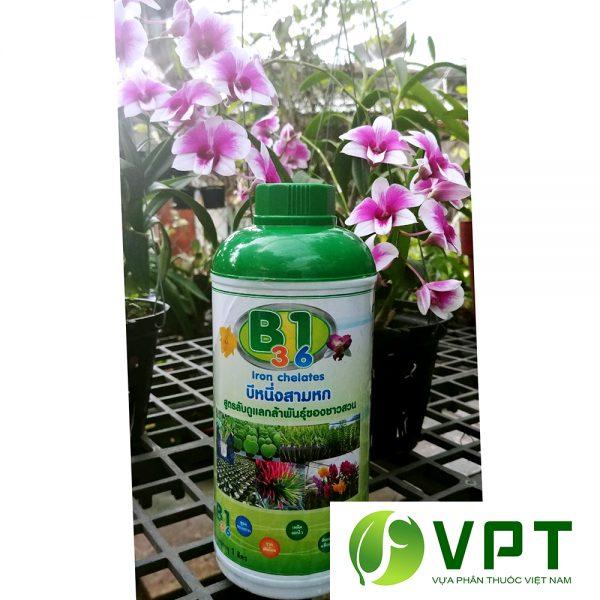 b1 3.6 Thai Lan chuyên kích hoa