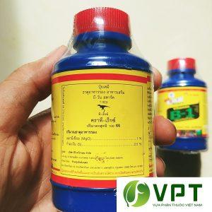 vitamin b1 xanh thai lan