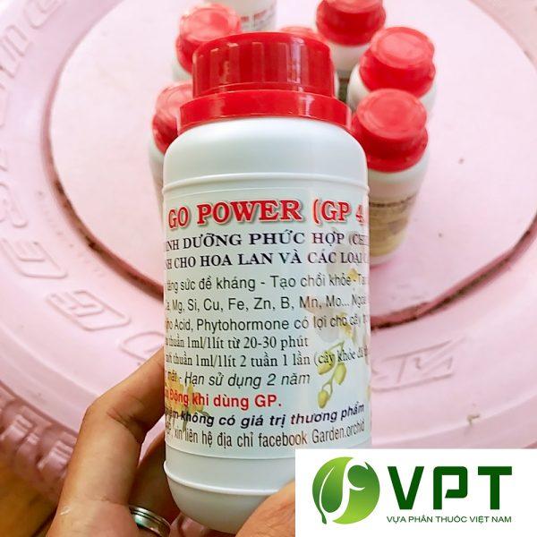 gp go power 4.0
