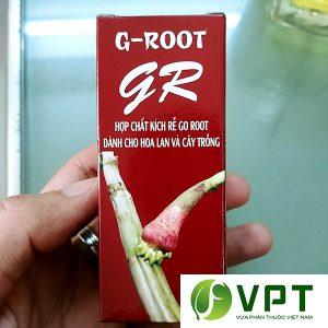 GR Go Root kich thich ra re