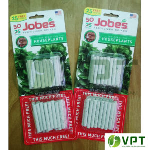 Phân con sâu trắng mỹ Jobes